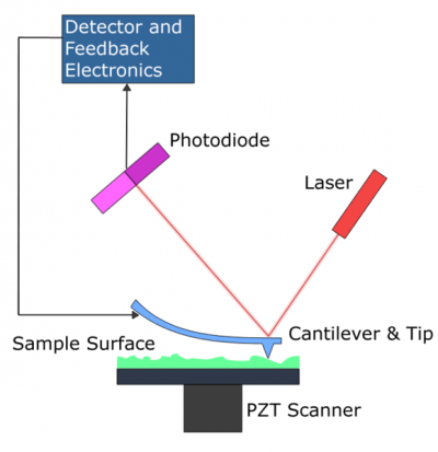 Atomic Force Microscopy concept: a laser is reflected off the back of a cantilever on a split photo diode