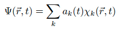 Expansion of the wave function into basis states