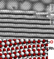 One-dimensional oxide at Rh steps