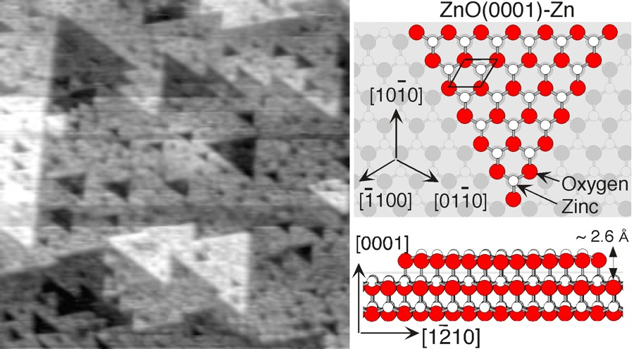 The ZnO(0001)-Zn surface